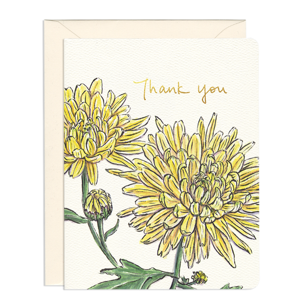 Thank You and Encouragement Greeting Cards by Gotamago