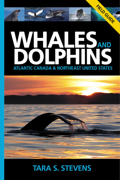 WHALES AND DOLPHINS OF ATLANTIC CANADA & NORTHEAST UNITED STATES: FIELD GUIDE