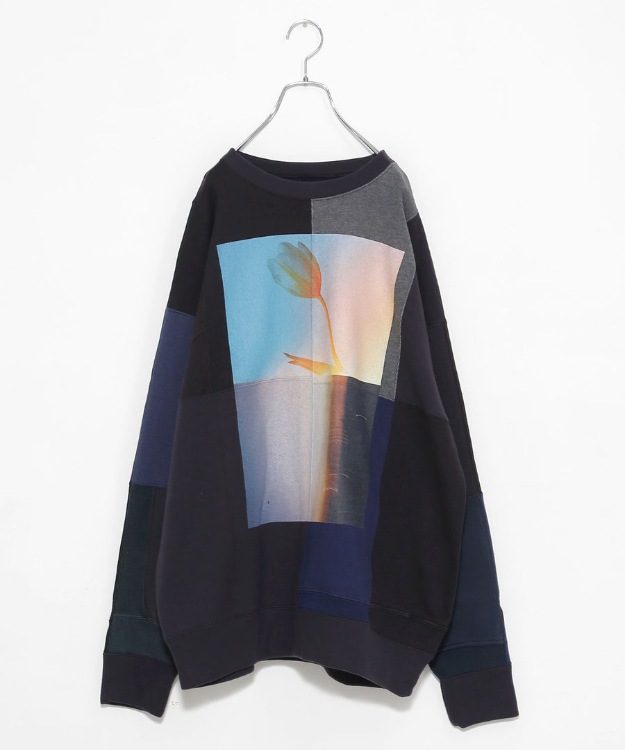SWITCHING SWEATSHIRT P/O(w/ PRINT)/CHAC*dust_001