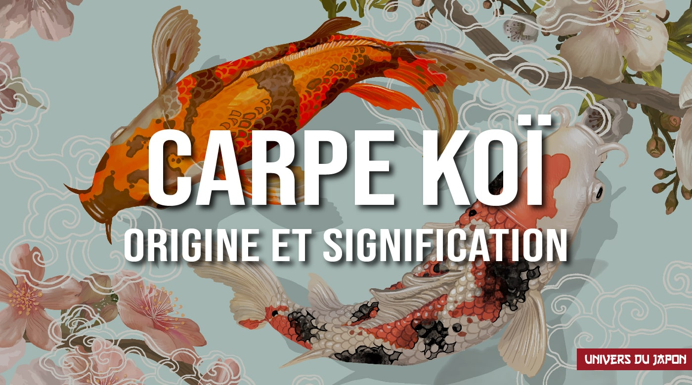 carpe koi signification