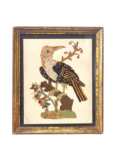 Framed Folk Art Bird Circa 1850