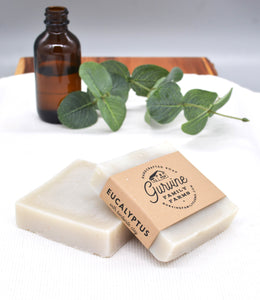 Eucalyptus Workout Soap