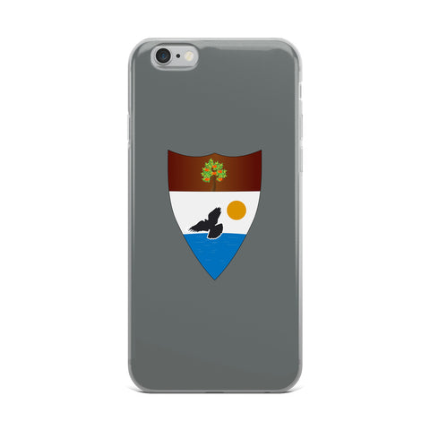Asphalt Liberland iPhone Case