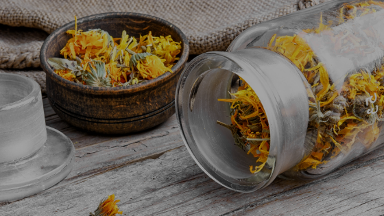 CALENDULA HOME-MADE HEALING OIL RECIPE