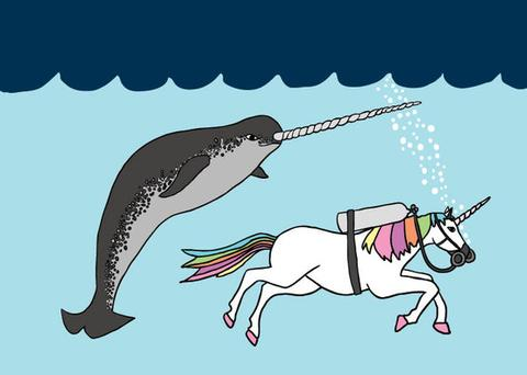 A unicorn swims next to a narwhal drawing