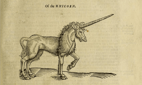 picture of drawing of a unicorn in the bible