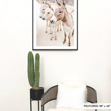 Load image into Gallery viewer, A large, framed fine art print featuring three burros in the Baja desert is on a white wall with a large cactus in a black planter and a rattan chair.