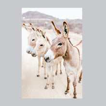 Load image into Gallery viewer, Fine art print (no frame) of three donkeys in Baja, Mexico.