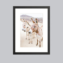 Load image into Gallery viewer, A small fine art print featuring three donkeys in Baja, Mexico in a black wood frame.