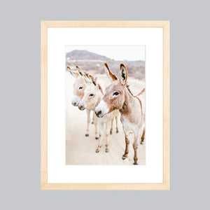 A small fine art print featuring three donkeys in Baja, Mexico in a natural wood frame.