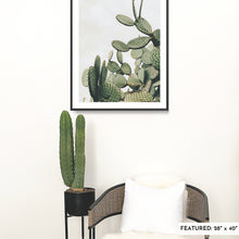Load image into Gallery viewer, A large, framed fine art print featuring desert cacti in the Baja desert is on a white wall with a large cactus in a black planter and a rattan chair.