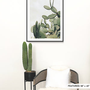 A large, framed fine art print featuring desert cacti in the Baja desert is on a white wall with a large cactus in a black planter and a rattan chair.