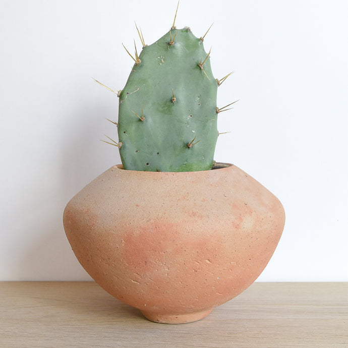 Terracotta vase handmade in Guadalajara, Mexico on a light wood table with a small cactus.