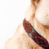 Close-up view of a dark brown leather dog collar with red woven design.