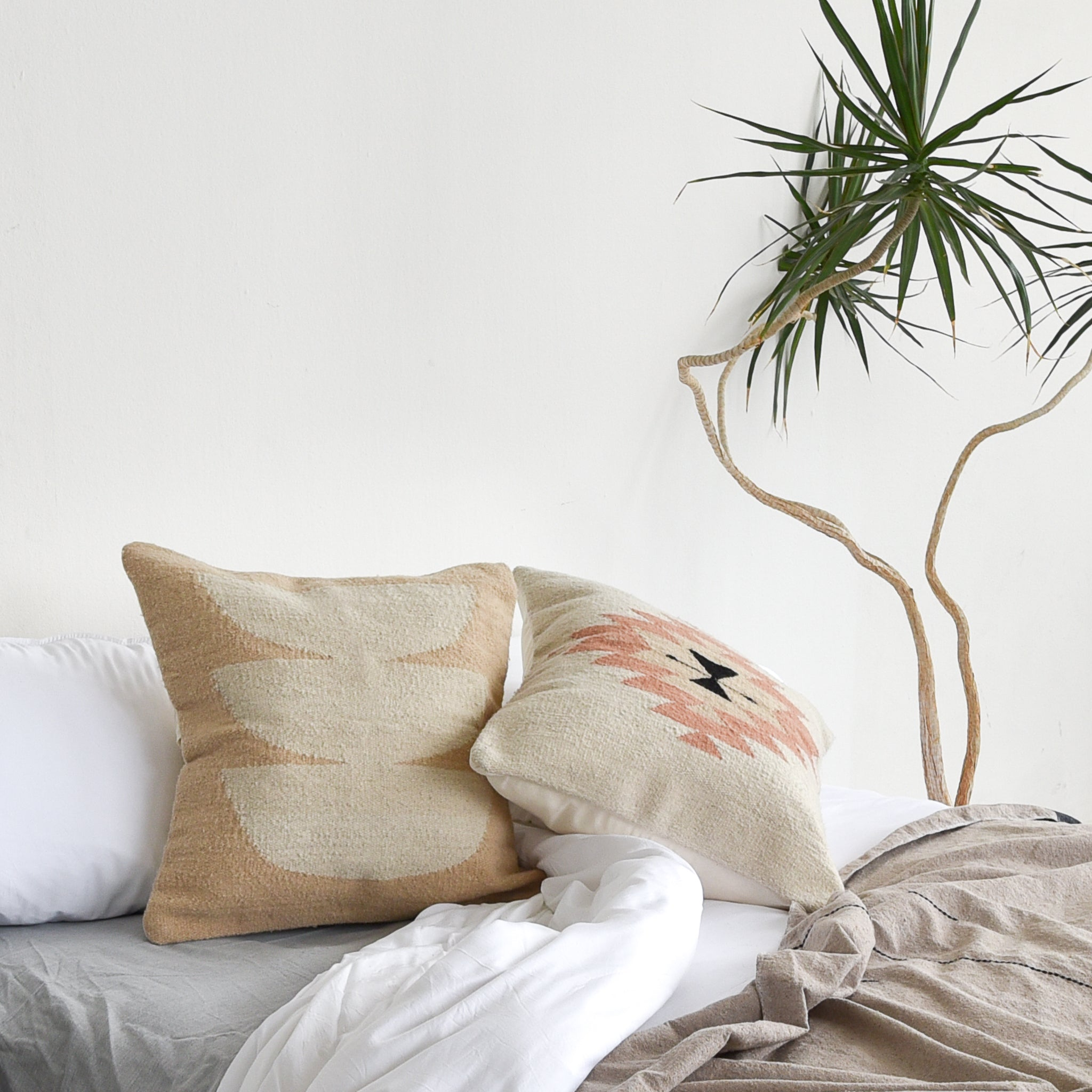 A set of wool Oaxaca throw pillows on a cozy bed with a yucca plant alongside.