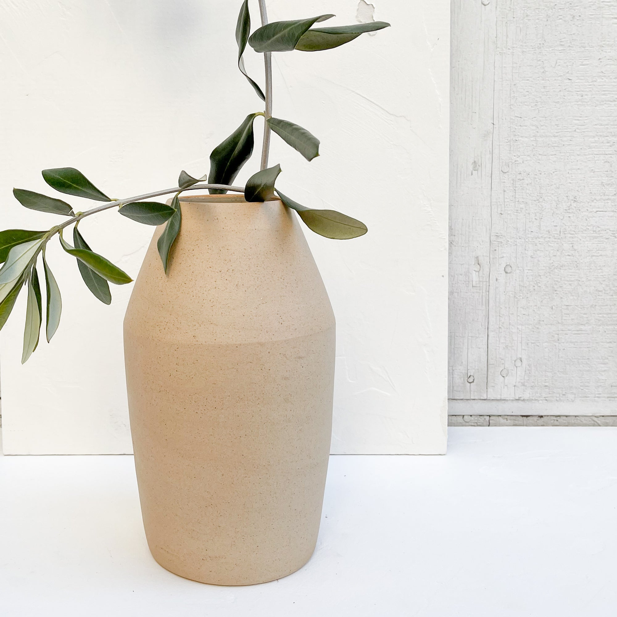 A terra-cotta ceramic vase with dry stems.