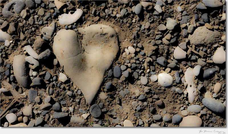 Heart of Stone / Archival Pigment Print