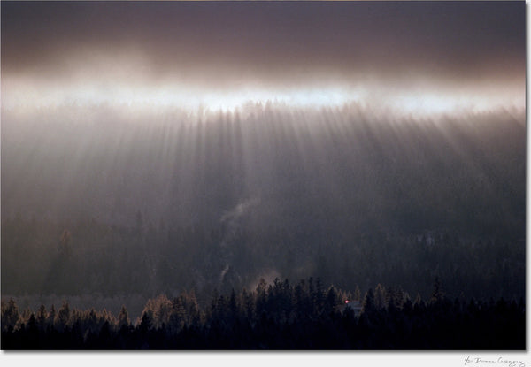 Winter Solstice, British Columbia / Archival Pigment Print