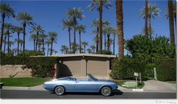Palm Springs / Archival Pigment Print