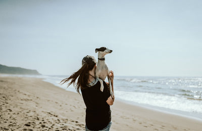 Doggo bonding time: 5 tips for an unbreakable connection