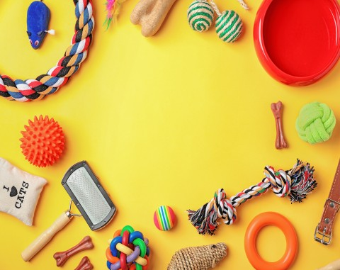 dog toys on a yellow background