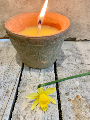 Citronella Candle in Aged Terracotta Pot