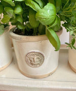 Kew Garden Pottery Herb Tray in Ivory