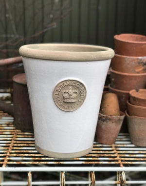Kew Garden Long Tom Pots in BONE (OFF WHITE) .... 3 SIZES