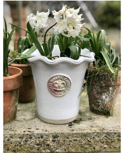 Kew Piecrust Plant Pot in Bone.