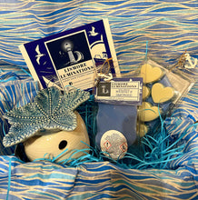 Load image into Gallery viewer, Sea shell wax melter gift set with Rock salt & Driftwood wax melts.