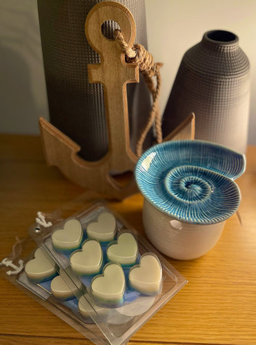 Sea shell wax melter gift set with Rock salt & Driftwood wax melts.