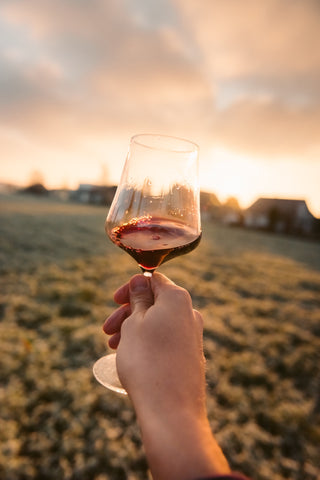 Person holding a glass of red wine with a field in the background