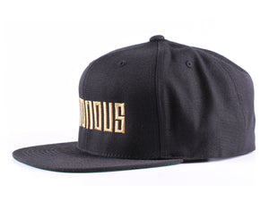 Vintage Frames Company Notorious Black/Gold Snapback Side