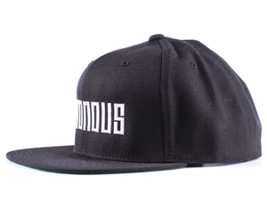 Vintage Frames Company Notorious Black/White Snapback Side