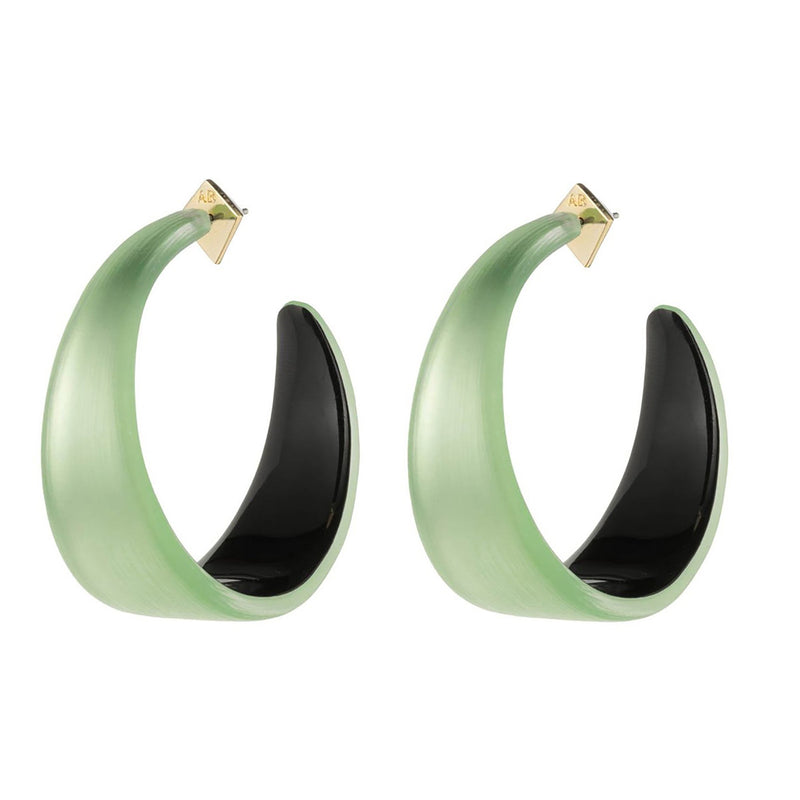 Wide Graduated Medium Hoop Earring