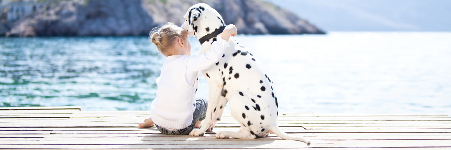 5 Ways To Speak Your Dog's Love Language