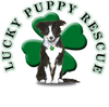 Lucky Puppy Rescue - Gift Card