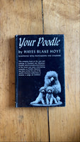 Your Poodle