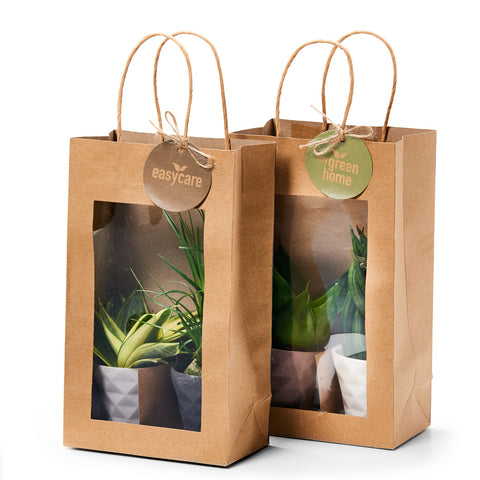 Paperbags-easycare-plants