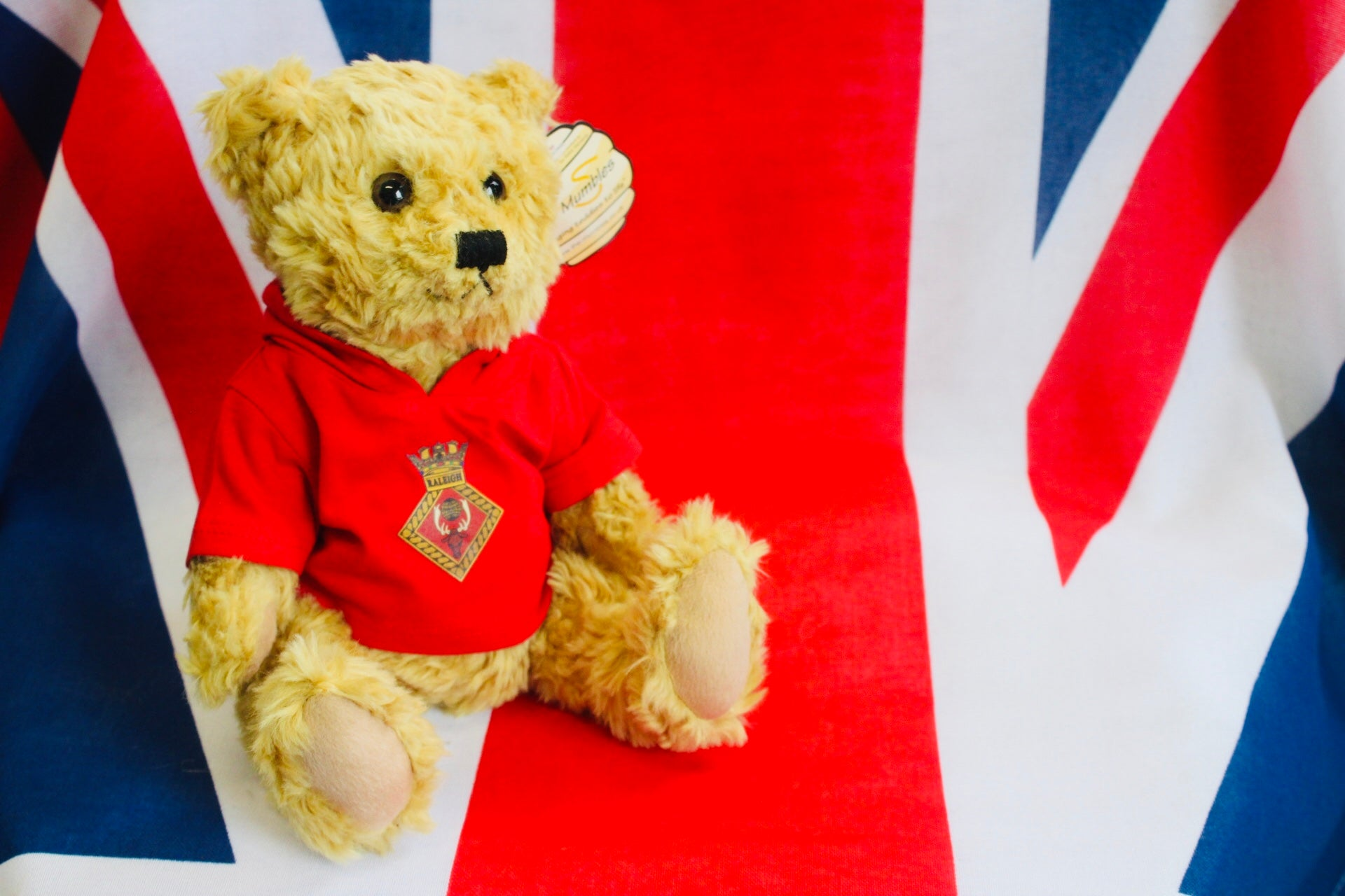 Raleigh and Royal Navy Bears
