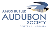 Amos Butler Audubon Bird Song Blend SMBC