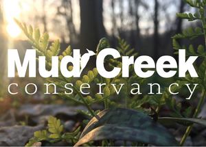 Mud Creek Conservancy Bird Song Blend SMBC