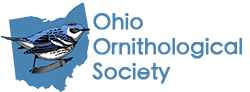 Ohio Ornithological Society Bird Song Blend