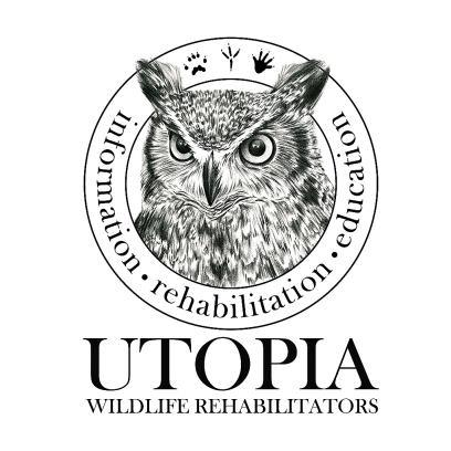 Utopia Wildlife Rehabilitators Bird Song Blend SMBC