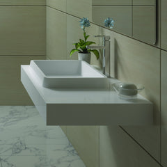 DW-114 Rectangular Wall Mounted Sink Shown