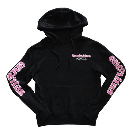 Ladies Pullover Icon Hoody