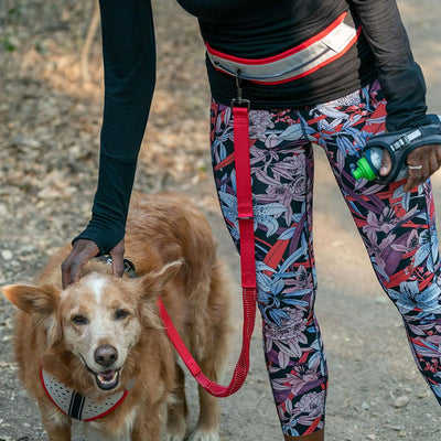 K9 Series Runner's Waistbelt with Leash