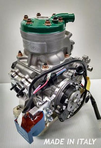 TAG Kart - X125T Power Valve Senior and Master