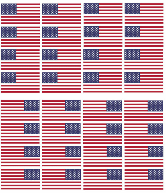 x12 Reversed & 12 Regular American Flag 2