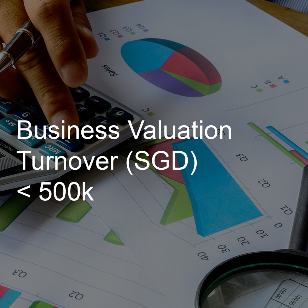 Business Valuation Service, Turnover <500K